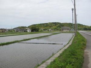 加努弥神社の遠望