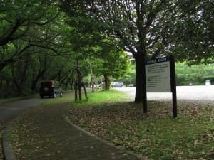 倉田山公園