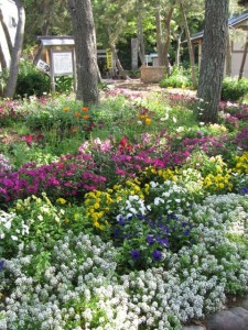 花の窟パーク