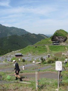 丸山千枚田