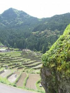 大石(丸山千枚田)付近からの眺め