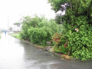堤防道路の迂回路