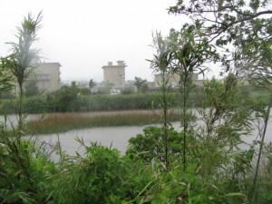 宮川浄化センター付近