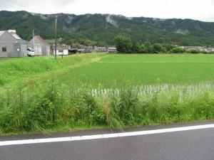 八幡神社から相楽神社へ(迷子に)