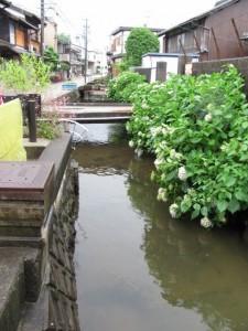 玉の湯の前の水路