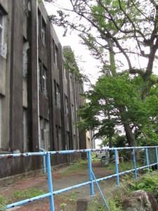 旧鳥羽小学校