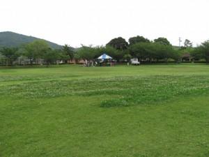 市民の森公園