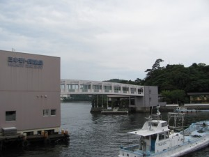 ミキモト真珠島