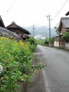 日本特殊陶業を遠望