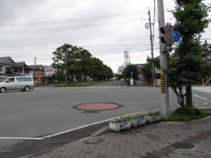 JR山田上口駅前のクスノキ並木