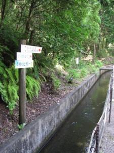 立梅用水の上流へ