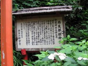 丹生都姫神社(丹生大師神宮寺)