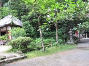 薬師堂(丹生大師神宮寺)と丹生神社