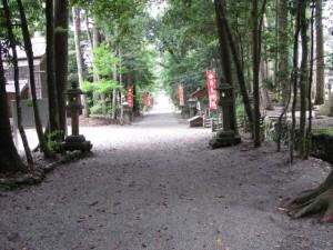 参道(丹生神社)