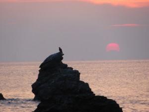 日の出と富士山(二見興玉神社)