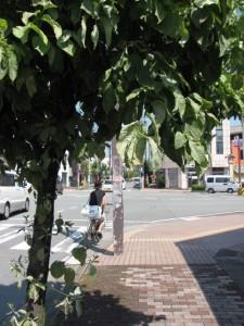 本町1交差点(伊勢市駅付近)