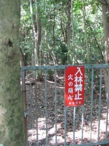 遥拝(上御井神社)