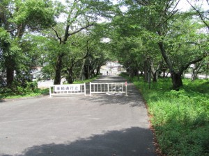 倭姫宮参道