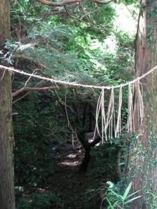 森林公園から堀坂峠までの途中