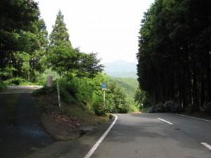 堀坂峠から美杉方面への下り