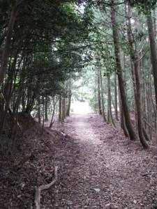 清水橋の手前 - 宇治岳道