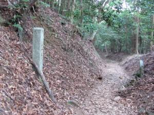 二十町角柱町石(A45)付近 - 朝熊岳道