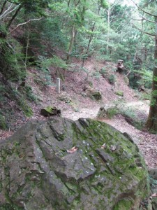 十九町角柱町石(A43)付近 - 朝熊岳道