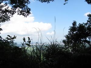 十三丁地蔵町石(A32)付近から - 朝熊岳道