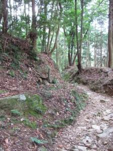 十一丁地蔵町石(A29)付近 - 朝熊岳道