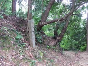 十一町角柱町石(A26)付近 - 朝熊岳道