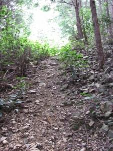 十町角柱町石への急坂 - 朝熊岳道