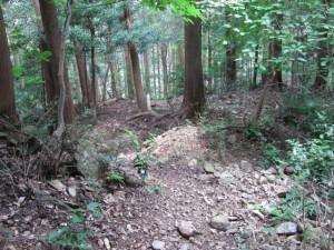 十、九町角柱町石から戻る途中の分岐 - 朝熊岳道