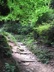 九、十丁町石への標識付近 - 朝熊岳道