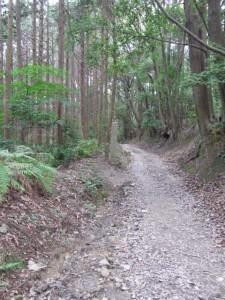 三町角柱町石(A9)付近 - 朝熊岳道