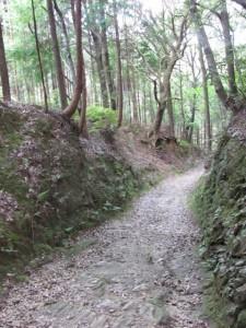一町角柱町石(A5)付近 - 朝熊岳道
