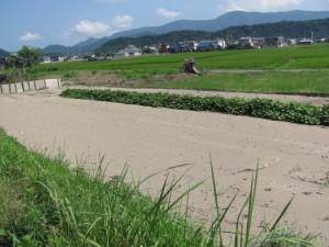 花房志摩守供養碑参道前付近の畑