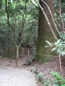 下御井神社付近(外宮)