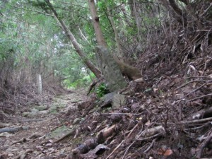 二十一丁地蔵町石(A46) - 朝熊岳道