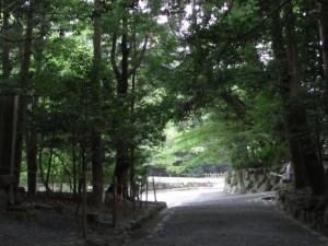 滝祭神付近