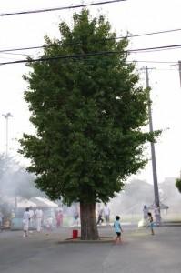 上條児童公園(大念仏行事)