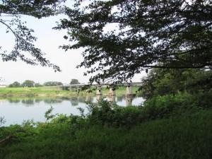 宮川右岸、度会橋から下流へ三番目の堤跡?からの風景