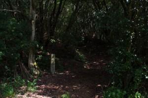 青峰山旧道登口の道標 - 青峰道(磯部道)