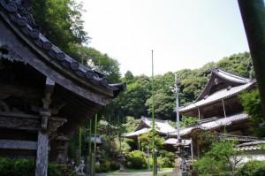 手水舎付近からの風景(青峰山正福寺)
