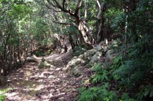 あまかぼうか岩付近の地蔵 - 青峰道(松尾道)