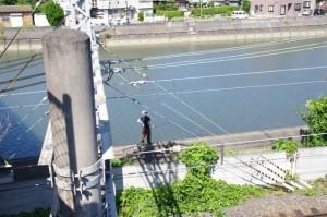 船津橋から望む加茂川