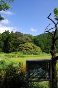 家建(やたて)の茶屋跡付近