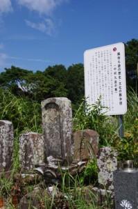 中村九造の墓(的矢の墓地)