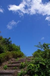 大的矢の日和山