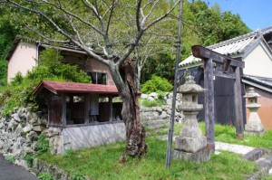 秋葉神社(的矢)