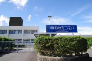 増養殖研究所 玉城庁舎(水産総合研究センター)